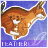 Avatar for Feather_Heather