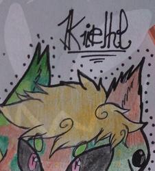Kiehl-headshot