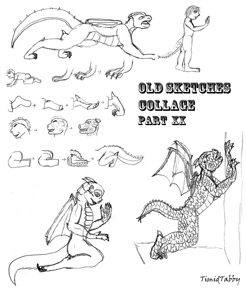 Old Sketches Collage #20