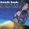 Do You Believe In Sandstorms? [Darude x Cher]