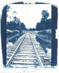 The Long Way Home - Cyanotype