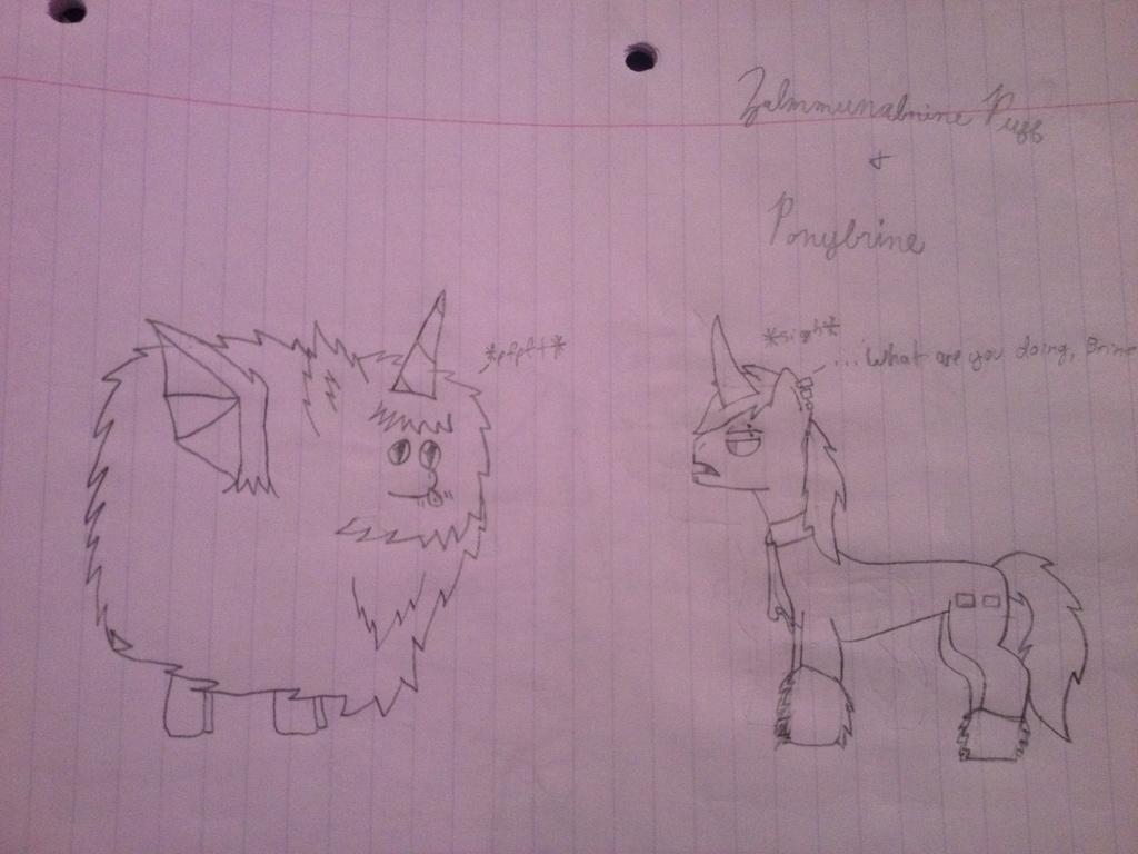 Zalmmunabrine Puff + Ponybrine