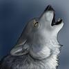 avatar of Sanjana