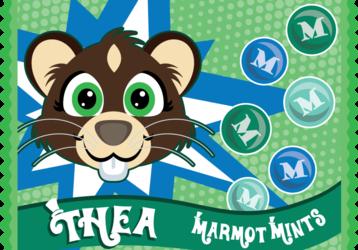 Marmot Mints!