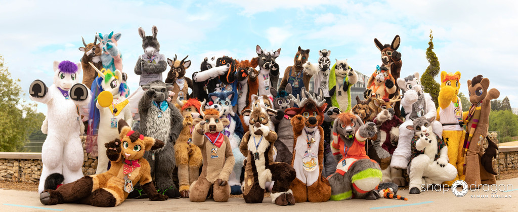 Most recent image: Hoofer Photoshoot; ConFuzzled 2018!
