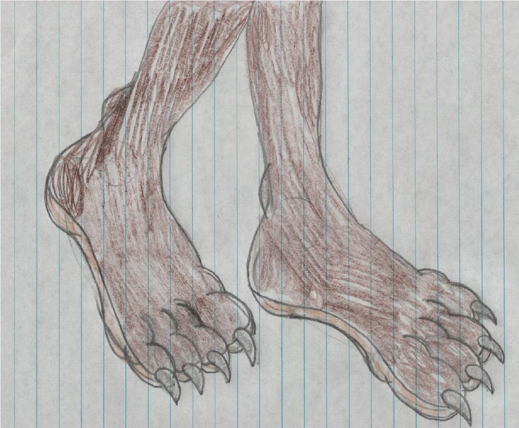 Most recent image: Heather Hedgehog Footshot