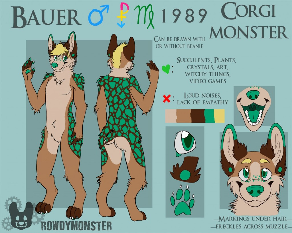 Bauer Reference Sheet