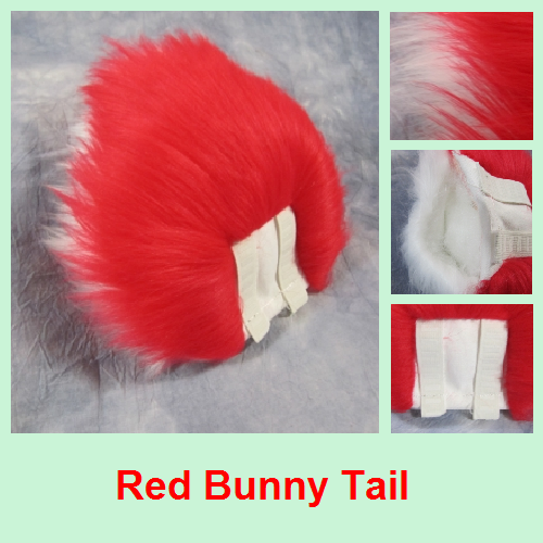 Most recent image: Red Bunny Tail