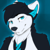 Avatar for WildWolf877