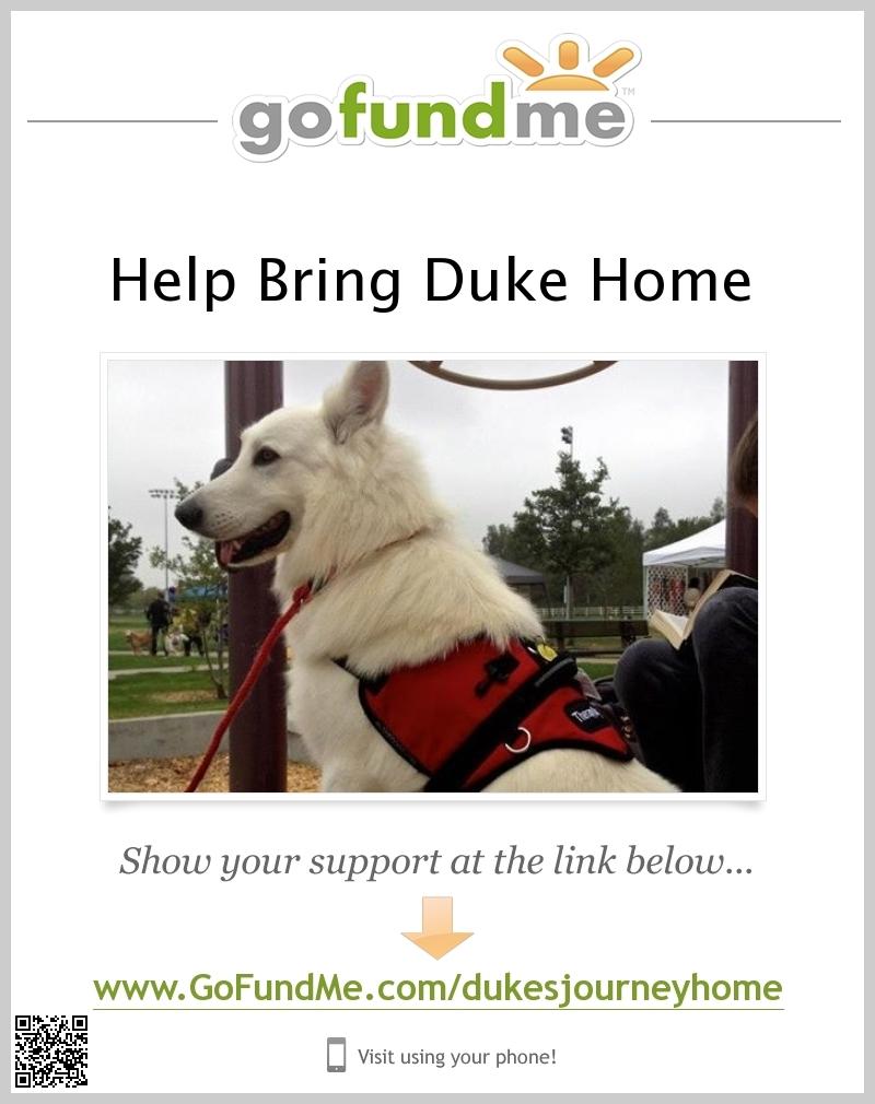 Service Dog Fundraiser Signal Boost!