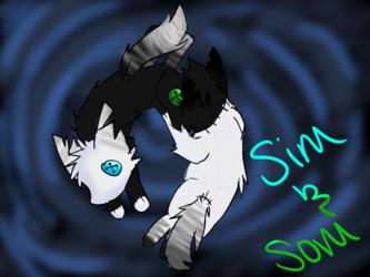 Sim and Som