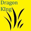 avatar of Drag0nK1ngMark