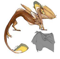 Hannah's Dragon