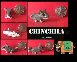 Chinchila - Grazi Abril 2015