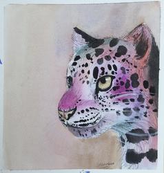 Amur Leopard Awareness
