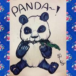 Panda (May 2017)