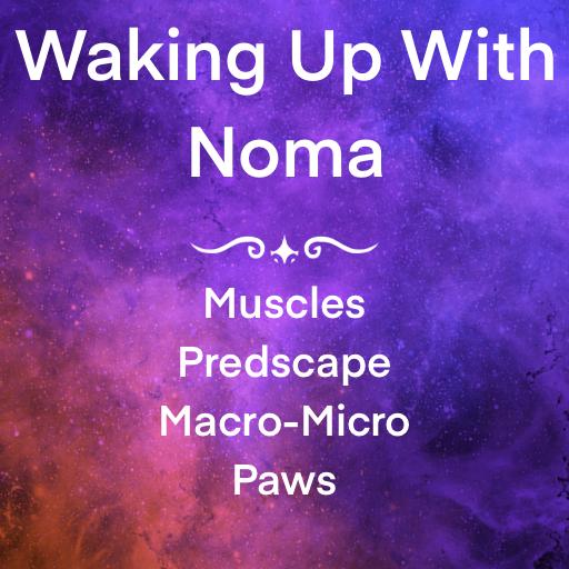 Waking up with Noma
