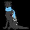 avatar of o-ffal