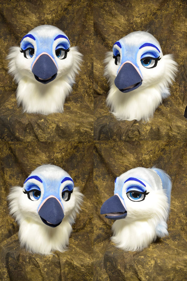 Sapphire the Jay