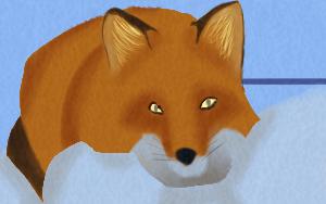 Most recent image: Foxxo