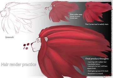 Lion Mane Rendering - Practice