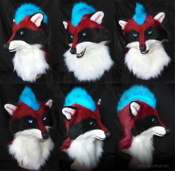 Raccoon Eric