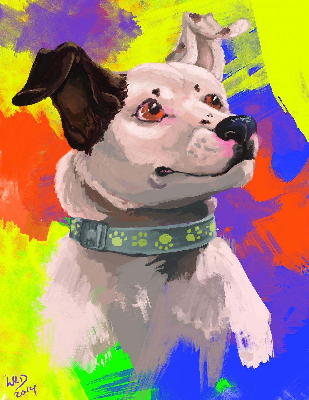 The Gypsy Dog