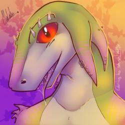 Drakkari - color collab