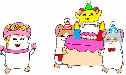 Happy Birthday Pashmina!