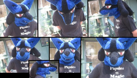 Lucario Head - For Sale