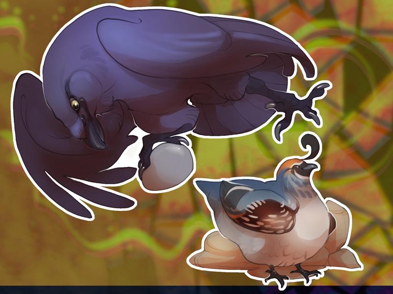 Raven + Quail