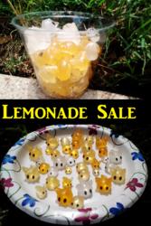 Lemonade Sale!