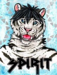 Spirit 1 - CBS