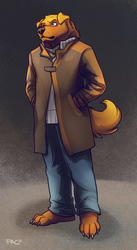 COMMISSION - Kalsang Namcaki (Watchdogs)