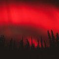 Northern Lights [Final Level - S1]