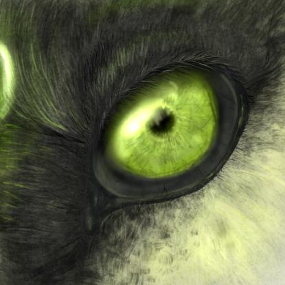 Archie's eye