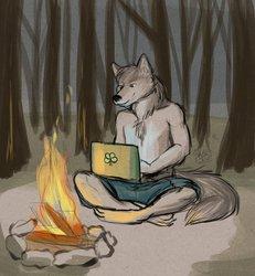 Campfire Surfin