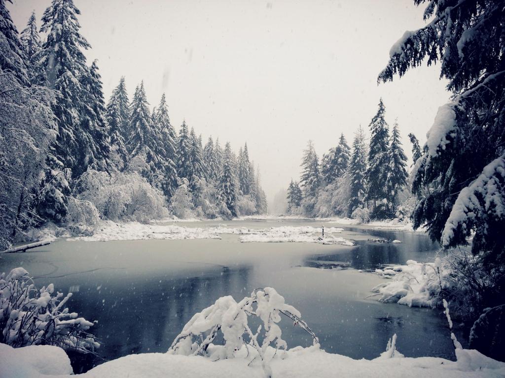 Winter's Requiem