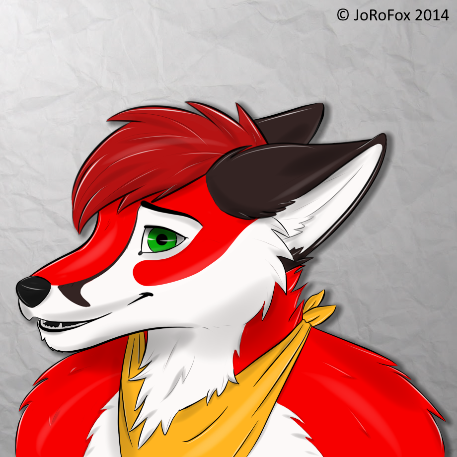 Most recent image: Shy Fox