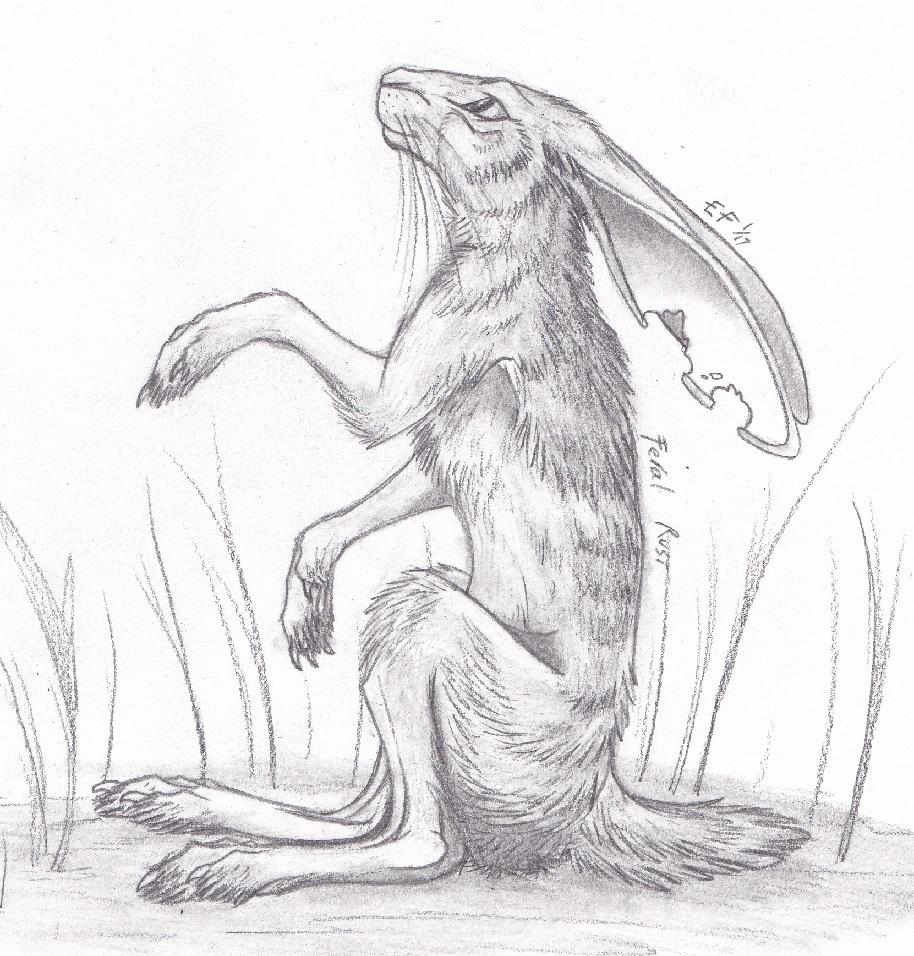 Feral Rust Sketch