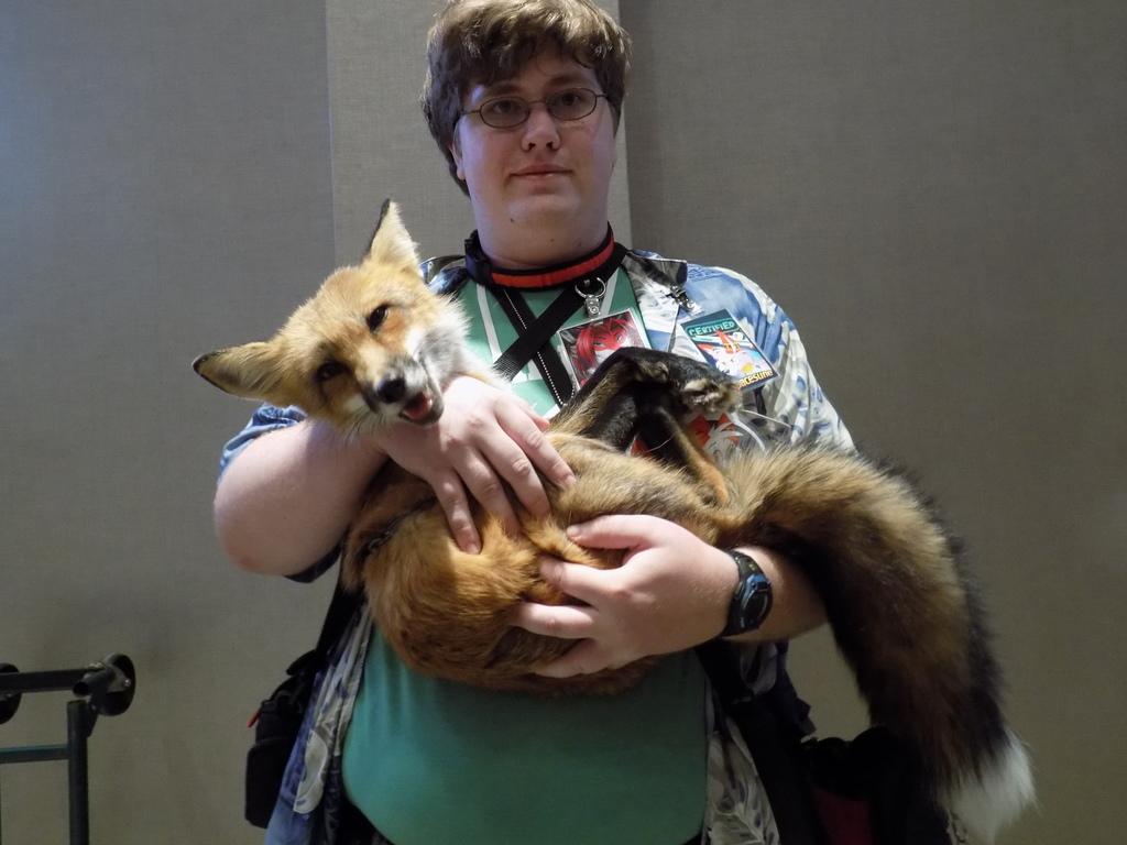 Holding A Fox