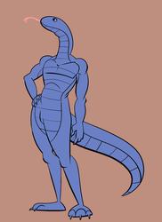 Snake Practice