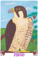 Falcon (2014)