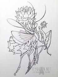 Mantis Tattoo