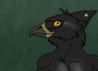 Crested Eagle Anthro--$8--OPEN
