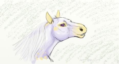 Stylish Saddlebred - by Windy