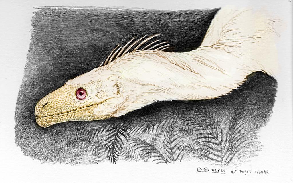 Dinovember - 19 - Albinsm