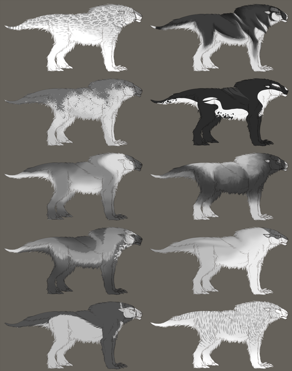 Tundra Patterns