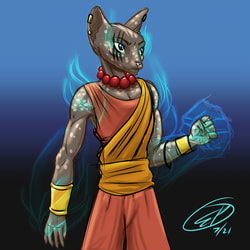 Shade of the Spirit Tabaxi Monk