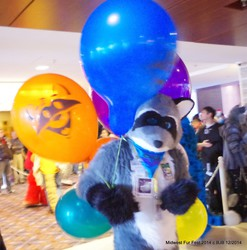 Balloon Raccoon